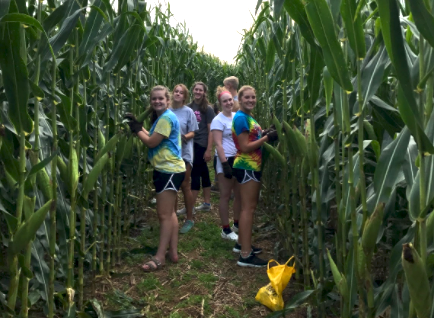 EAHS hosting corn maze to benefit Four Diamonds Fund